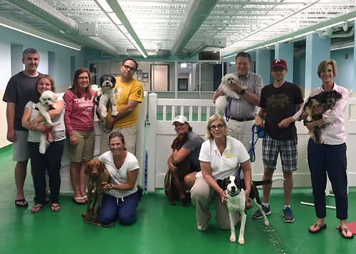 "Obedience 1, Session G, Summer 2015-Wed; Class photo • <a style=""font-size:0.8em;"" href=""http://www.flickr.com/photos/65918608@N08/20956927780/"" target=""_blank"">View on Flickr</a>"