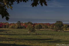 Montreal CountrySide (Saydryk Photography) Tags: usa automne franklin montreal border sud octobre rive 2015 frontiere