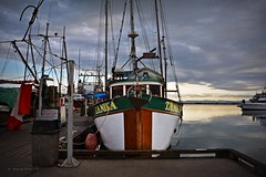 Tanika Fishing Trawler  c. 1969 (Images by Christie  Happy Clicks for 2016!) Tags: sky canada history 1969 marina dock nikon village bc fishermen cloudy stormy richmond historic wharf hull woodenboat fishingboat fishmarket fraserriver trawler steveston woodenhull tanika stevestonsfishmarket stevestonsheritagefishingvillage