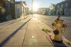 GULP (PureWest) Tags: street morning toronto sunrise shadows firehydrant dundas gulp