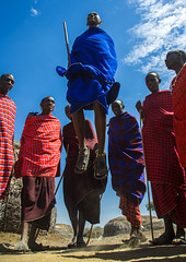 Tanzania, Ashura region, Ngorongoro Conservation Area, maasai men performing the warriors' dance (Eric Lafforgue) Tags: africa travel red portrait people man motion men tourism vertical tanzania outdoors person photography dance jump jumping day adult dancing african performance ceremony multicoloured tribal jewellery safari celebration textile males warrior massai tribe groupofpeople cultures masai maasai adultsonly onthemove arusha spear eastafrica rift menonly traditionalclothing realpeople traditionaldancing colorimage lookingatcamera maassai onlymen fulllenght ngorongoroconservationarea indigenousculture 9people africanculture ethny africantribe traditionalceremony colourpicture ashuraregion tz13076