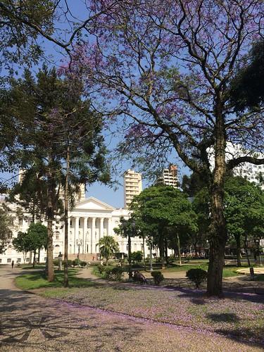 Universidade Federal do Paraná (UFPR)