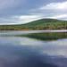 Black Pond - W C Slattery