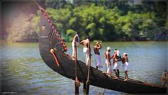 IMG_3996 (|| Nellickal Palliyodam ||) Tags: india race boat snake kerala krishna aranmula avittam parthasarathy vallamkali palliyodam malakkara nellickal jalothsavam