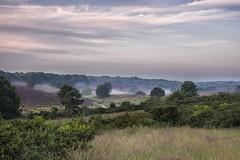 Posbank (nsiepelbakker) Tags: mist fog landscape postbank arnhem