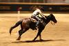 RAWF15 JSteadman 0116 (RoyalPhotographyTeam) Tags: sun royal rodeo 2015 rawf nov08