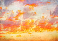 Nubes de verano (Daniel Hernanz Ramos) Tags: streetpictures artisticpictures danielhernanzfotografodemadrid animalsphoto ambientpictures copyrightdanihernanz animaldetailpictures animalsfacetoface closeupanimalpictures thebestpicturesofanimals beautifullandscapespictures pictureswithatmosphere