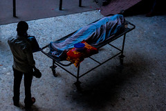 End of Life (Jubair Bin Iqbal) Tags: festival photo concert photographers teacher photographs agency writer dhaka portfolio bangladesh trainer professionalphotographer journalist southasia photogallery masterclass curator weddingphotographer photographyequipment topphoto photographytips bangladeshiphotographer photographyportfolio royaltyfreeimages chobimela portfoliomanagement jbi bestphotography photographytechnique photographywebsites concertphotographer copyrightfreeimages jubair bestphotographers photosgallery freestockimages photoartgallery webphotogallery weddingphotobooks photographerportfolio artphotogallery jubairbiniqbal freeimagesonline freeroyaltyfreeimages naturephotogallery asianphotograher photogalleryofjubair photoofjubair photographyofjubair topphotoofjubair bestphotoofjubair bangladeshitopphoto portfolioofphotographer freeimagesforwebsites topphotographerwebsites2013 bestphotographerswebsites2013 photographerwebsites2013 photographerswebsites2013 freeimagesforcommercialuse modelsphotogallery celebrityphotogalleries modelphotogallery stockimagesfree photogalleriesphotographers