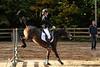 Doorn (Steenvoorde Leen - 2.7 ml views) Tags: doorn manegedentoom arreche paarden springen hindernis horses jumping fench halloween 2015 happyhalloween manege horse pferd reiten paard pferde haloween utrechtseheuvelrug cheval