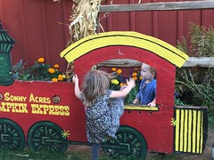 """Paul and Inde in the Sonny Acres Pumpkin Express • <a style=""""font-size:0.8em;"""" href=""""http://www.flickr.com/photos/109120354@N07/22597543863/"""" target=""""_blank"""">View on Flickr</a>"""