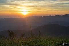 Sunrise @Doi Kad Phi (Rkitichai) Tags: nature sunrise landscape thailand wawee chiangrai travelphotography thaitravel doikadphi