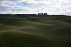 Rolling hills in Val d'Orcia (Antonio Cinotti ) Tags: italy landscape nikon italia hills tuscany cypress siena toscana valdorcia cypresses paesaggio colline cipressi campagnatoscana d7100 nikon1685 valdorcia nikond7100