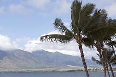 Sugar Beach and Iao (Explored) (RyT2112) Tags: mountains pacific maui explore palmtrees iao kihei sugarbeach explored pahty canon5dmkii canonef70200mmf28lisiiusm