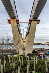JGR_0167 (Jistfoties) Tags: construction forth forthbridges civilengineering newforthcrossing pictorialrecord queensferrycrossing