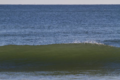Steep and Green (brucetopher) Tags: ocean blue sea green beach water surf break wave crest breakingwave brucetopher