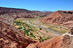 atacama_2015-11-08_18_061 (coyote-agile) Tags: chile desert oasis atacama sanpedro 2015 quitor