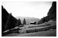 hütte, zaun und baum (fluffisch) Tags: fluffisch heiligenblut kärnten austria alps hohetauern carlzeiss biogon21mm zeissbiogon21mmf28 wide g21 g2 35mm negativ rangefinder messucher analog film bw adox cms20 contaxg2