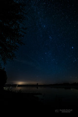 Starry night over the river (tbnate) Tags: wisla vistula river stars night sky shadow silhouette bydgoszcz poland polska astrophotography bynight tree outdoor outside nikon nikond750 samyang 14mm samyang14mm strzelcedolne ultrawideangle landscape