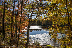 Waywayanda Autumn_4950 (smack53) Tags: smack53 waywayandastatepark trees lake pond autumn autumncolors fall fallcolors fallseason outdoors outside scenic scenery nikon d300 nikond300