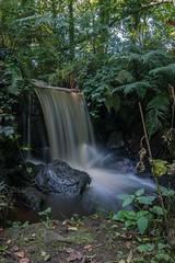 Rivelin Falls (AllFallD0wn) Tags: rivelin sheffield outdoor waterfall water wheel slow shutter long exposure valley forest green leaves