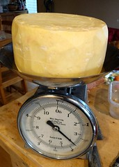 Weighing the homemade cheddar (Ruth and Dave) Tags: cheese cheddar homemade cheesemaking weighing scales kitchen