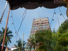 Sringeri Sharada Temple Photos Clicked By CHINMAYA M RAO (133)