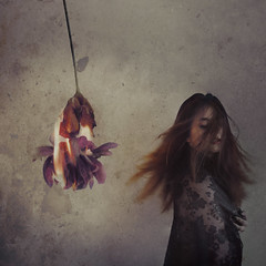 freed, sweet relief. (Stellie Chavez) Tags: lettinggo burning flowers fire selfportrait selfportraitphotography self portrait fineartphotography fineart fine art conceptualphotography conceptual conceptphotography surrealphotography surrealism elliechavezphotography