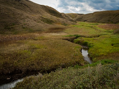 Coulee Creek (johnfuj) Tags: creek scenery water cloud alberta coulee sky outdoor nature ecosystem grassland prairie