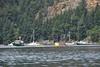 DSC_1156.jpg (JeffD4449) Tags: gulf islands montague harbor marine park gulfislandsmontagueharbormarinepark