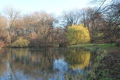 Warszawa (Warsaw), Poland (LeszekZadlo) Tags: water pond lake park autumn fall blue sky landscape landschaft paisaje pejza jesie trees polska poland polonia pologne polen mazowsze mazovia warschau varsovie green
