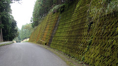 Road near Hongucho (Geoff Buck) Tags: japan raon embankment retainingwall moss hongu komanokodo komano hiking trail forest green hongucho