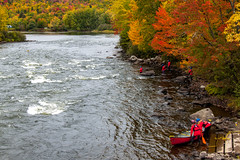 Outward Bound Rescue (blackseal35) Tags: 2016 24105l androscogginriver canon canonti1 cooscounty errol fall nh newhampshire northwoods whitemountains c color colorful colors leafpeeping leaves mountains river roadtrip stream view water woods