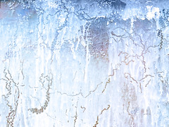 Making tracks (CactusD) Tags: greenhouse glasshouse horticulture glass landscape england nikon d800e fx texture uk unitedkingdom gb 24mmf35pce pce f35 tiltshift tilt shift abstract detail 24mm gardening