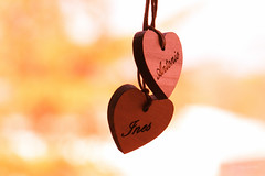 IMG_5949_dp_noi_f (felixsea89) Tags: canonef100mm canon70d photography inesguerriero novembre 2016 love heart stillife calore