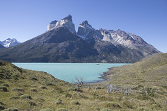 Chile (richard.mcmanus.) Tags: chile torresdelpaine loscuernos nordenskjoldlake lake mountains south america landscapes mcmanus blue patagonia