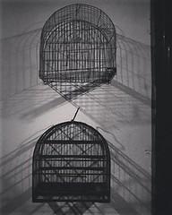 (Cris Romeiro.) Tags: preso cage gaiola shadow