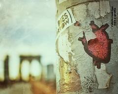 The heart of the city (Mister Blur) Tags: brooklyn bridge new york city heart street art bokeh forlife depthoffield james nikon d7100 35mm streetart photography
