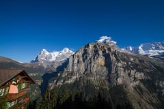 Eiger, Mnch und ... (mightymightymatze) Tags: switzerland schweiz suisse mrren bern berne berneroberland lauterbrunnen lauterbrunnental mountains mountain berge berg alpen alps alpes