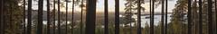 PANORAAMA-JULKULANMÄELTÄ (JP Korpi-Vartiainen) Tags: august finland kallavesi kuopio kuopiopohjoissavo pohjoissavo puijo puijonsarvi september auringonlasku city elokuu evening forest harbour ilta järvi kaupunki kesä kesäilta kesäinen lake metsä ranta summer summery sunset town urbaani urban