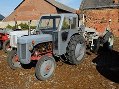 Tracteurs FERGUSON (Remorquage) (xavnco2) Tags: show old tractor france 30 farm farming meeting agriculture antico ferguson towing tracteur ancien trattore somme agricoltura raduno 2015 agricole petitgris rassemblement agricolo remorquage littlegrey pnancourt