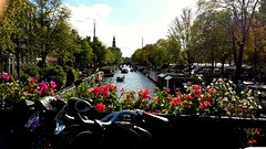 Amsterdam Settembre 2015 (silviaparziale) Tags: amsterdam canal september xxx fiori settembre bicicletta amsterdamcanal loveamsterdam lovelycity
