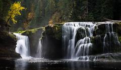 Falls in the Fall (take 2) (fotostevia) Tags: autumn fall waterfall fallcolor waterfalls rivers lewisriver giffordpinchot lowerlewisriverfalls pentaxart