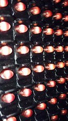 LED (iranpros) Tags: led             led led led