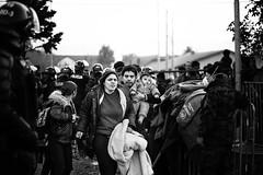 Migrants in Brežice (Slovenia/Croatia border) (Giulio Magnifico) Tags: croatia slovenia syria reportage syrian jihad migrants brežice polaroidcube 1nikkor10mmf28 nikond800e nikkormicro105mmafsvrf28 da3sh