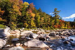 Swift River Color, White Mountain National Forest, New Hampshire (edleckert) Tags: sky cloud plant color tree horizontal photography day unitedstates newhampshire fallfoliage northamerica newenglandusa kancamagusscenicbyway deciduoustree easternusa swiftriverlowerfalls