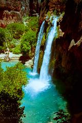 Havasu Falls (xjblue) Tags: arizona film 35mm landscape waterfall desert kodak grandcanyon 1996 olympus canyon hike oasis backpacking reservation havasupai pointnshoot havasufalls infinityjr