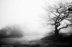 (Giorgos-S) Tags: blackandwhite landscape fuji athens greece parnitha x100 acharnai