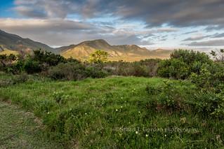 Evening Light, Klein River, South Africa