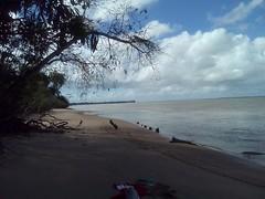 Awala-Yalimapo, plage des Hattes (longue de 5 km), décembre 2015