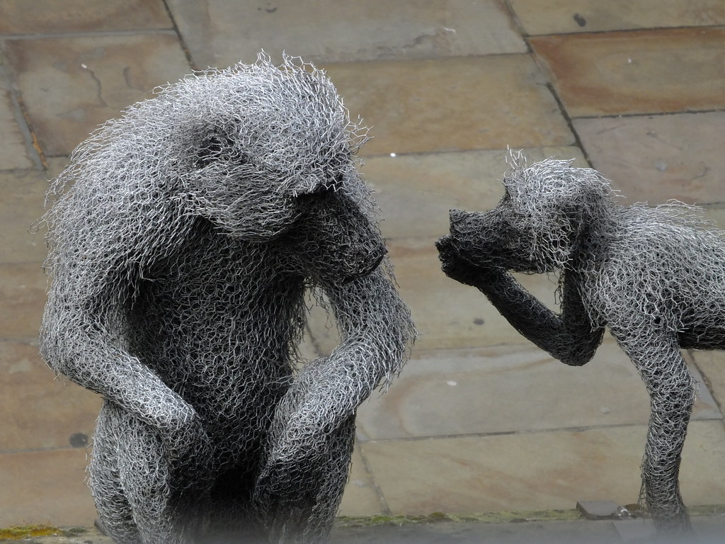 The World\'s Best Photos of baboon and london - Flickr Hive Mind